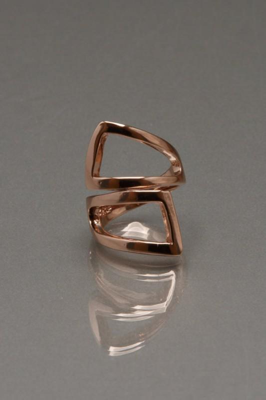 R008_geometry ring