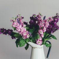 Урок визуального мерчендайзинга: цветы в магазине